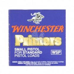 Winchester small pistol x 100