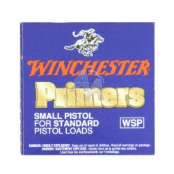 Winchester small rifle x 100