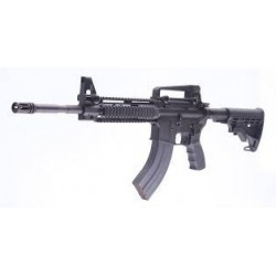 "Fusil Luvo AR-15 ""Black Lion"""